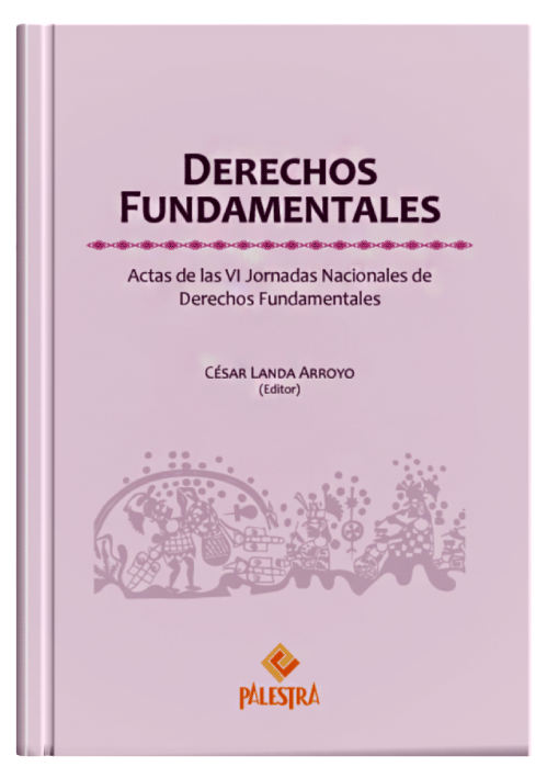 DERECHOS FUNDAMENTALES - Actas de las VI Jornadas Nacionales de Derechos Fundamentales.